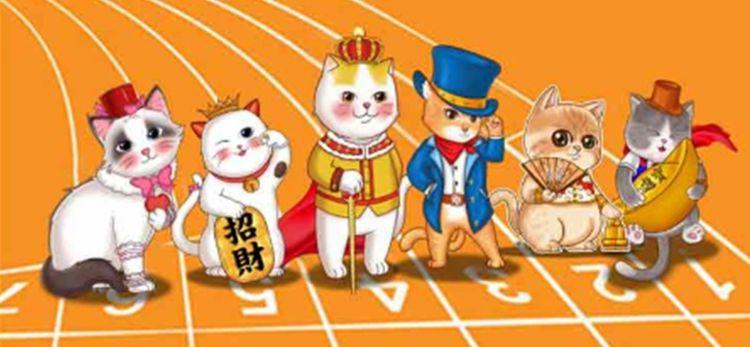 派特寵物街貓群