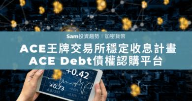 ACE Debt
