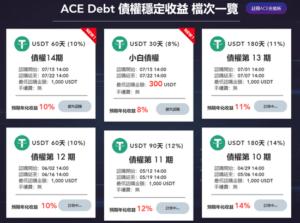 ACE Debt項目